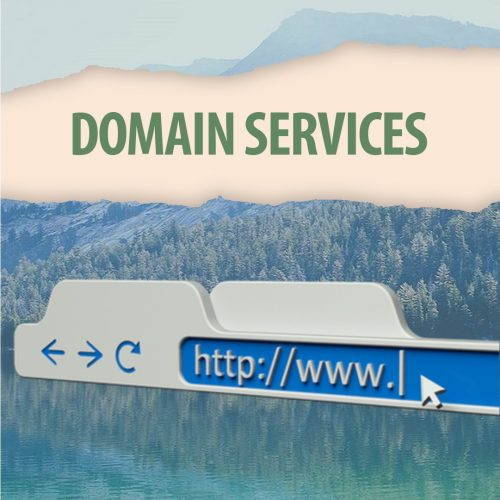Domain Purchase & Set Up Services